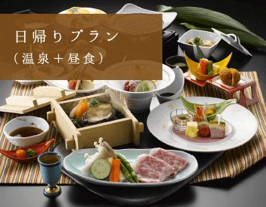日帰りプラン(温泉+昼食)