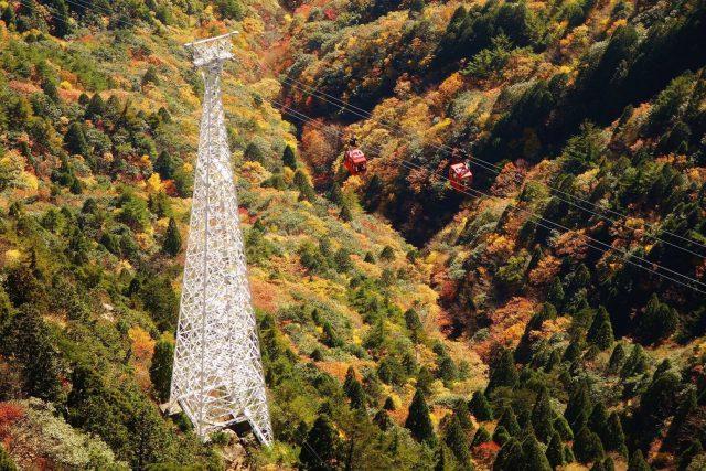 秋の御在所岳イメージ