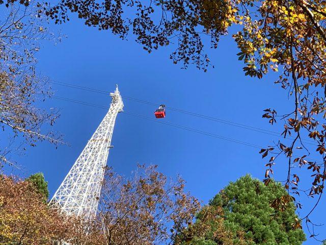 本谷ルートから鉄塔を見上げる