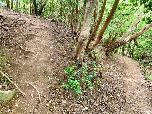 菰野富士駐車場からのハイキングルート