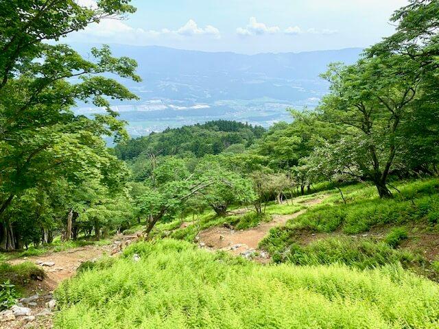 藤原岳8合目過ぎのイメージ