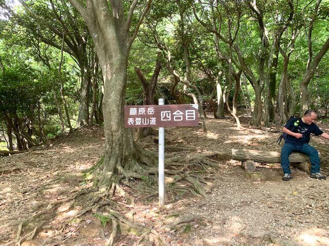 藤原岳4合目