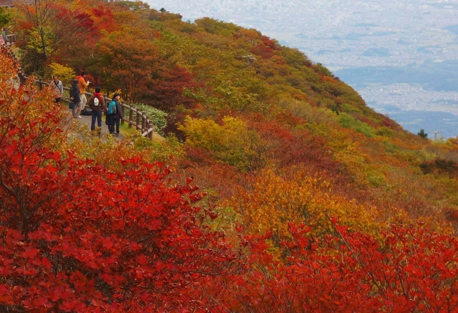 御在所岳山上の紅葉イメージ